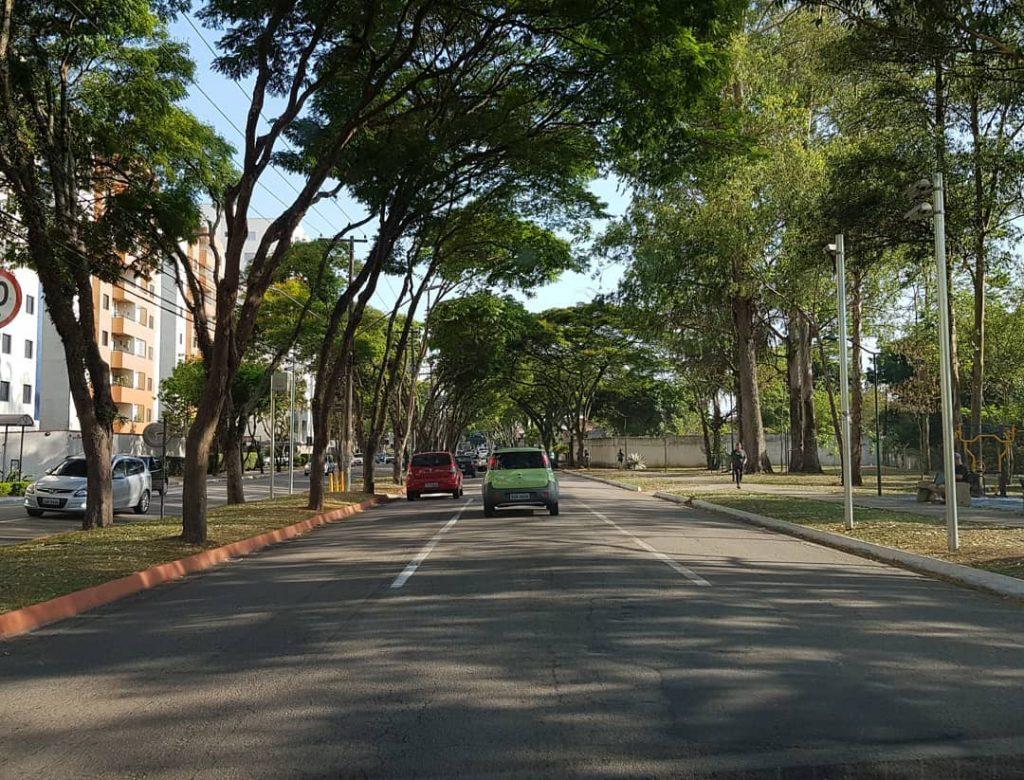 São José está entre as 3 cidades mais arborizadas do Brasil